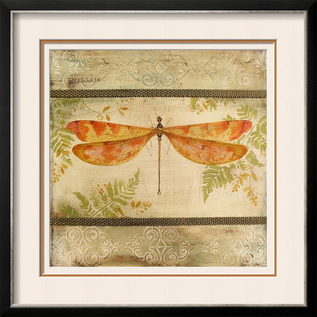 装饰 模板/红蜻蜓装饰标本模板下载