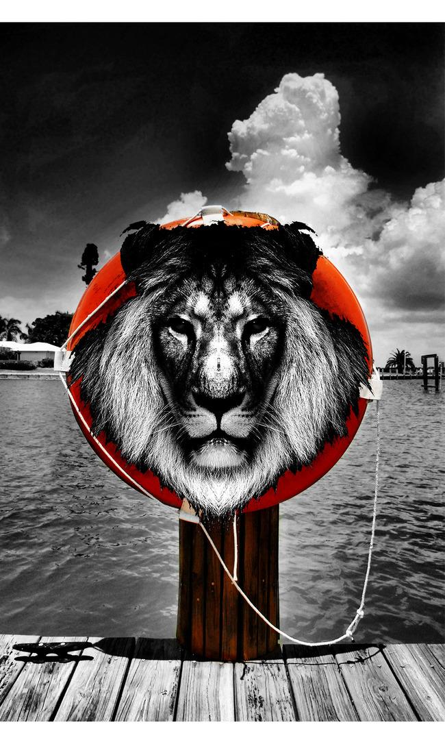 保护野生动物宣传海报模板下载