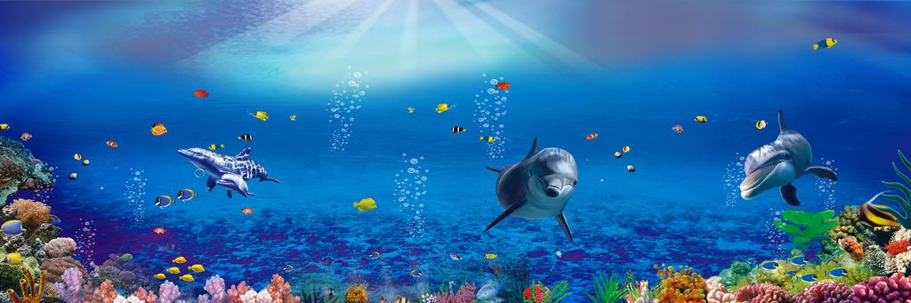 海底世界 海洋馆 海洋海底海豚蓝色 海底生物 珊瑚礁 海星 气泡 泡泡