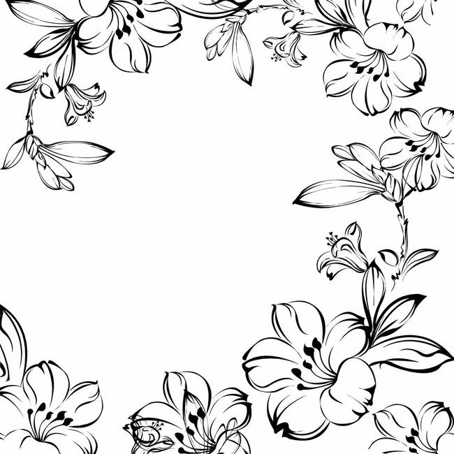 垂丝海棠 手绘图
