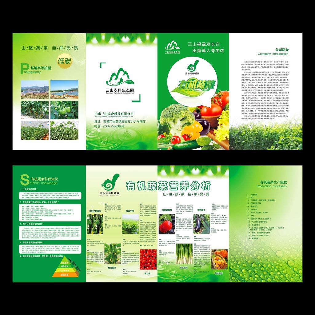 平面设计 宣传单 折页设计|模板 > 有机蔬菜折页海报宣传单  下一张&