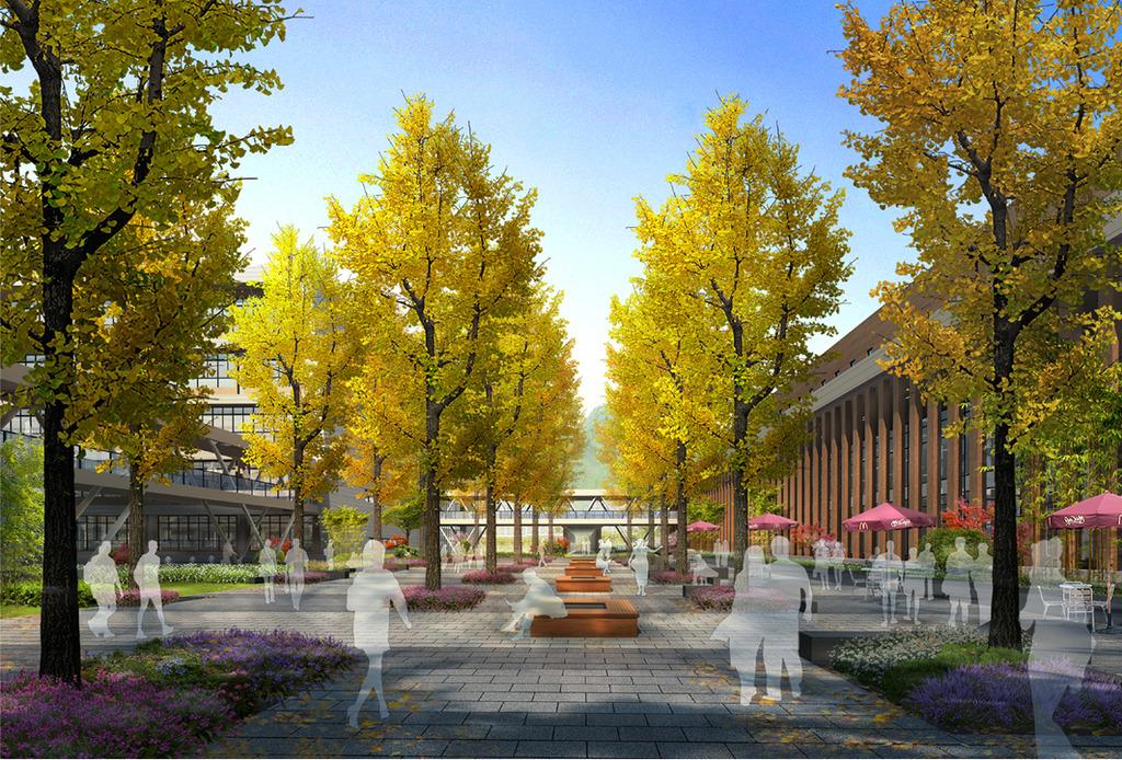 学校读书广场景观设计效果图
