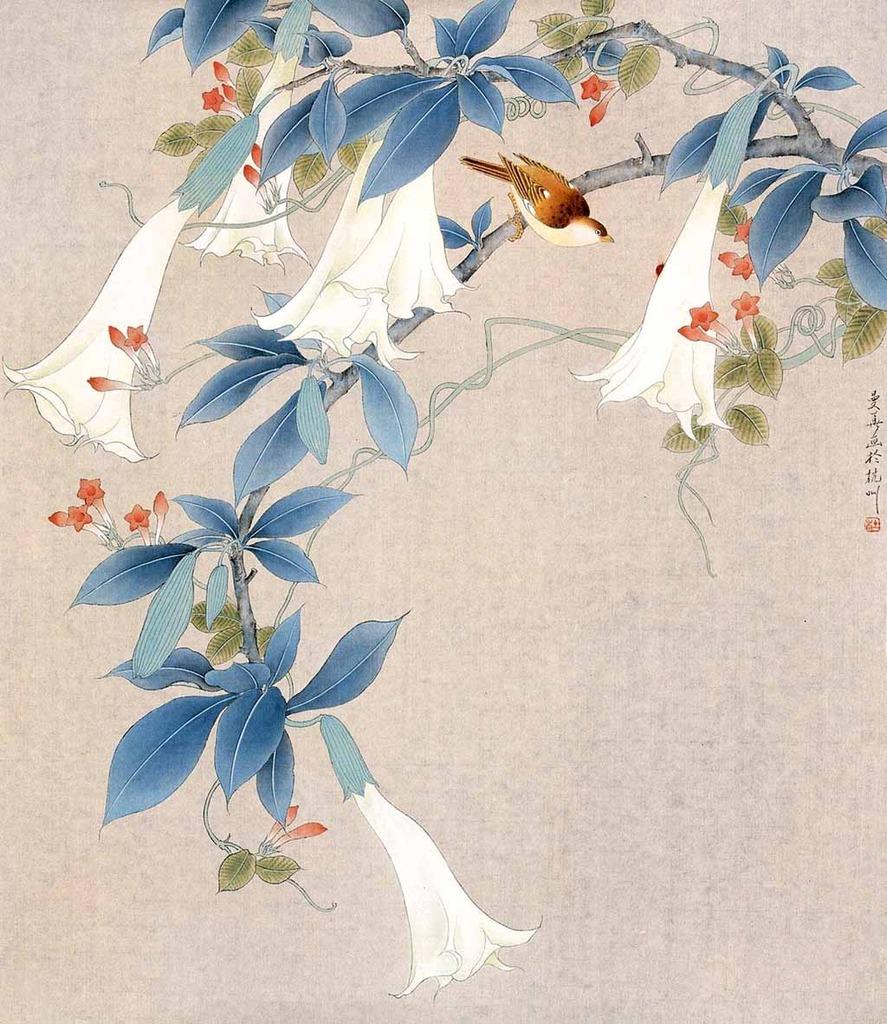 彩手绘兰花插画