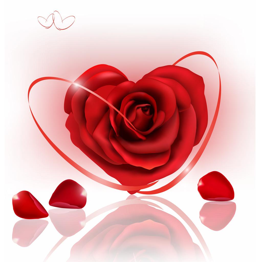 玫瑰花无框画高清