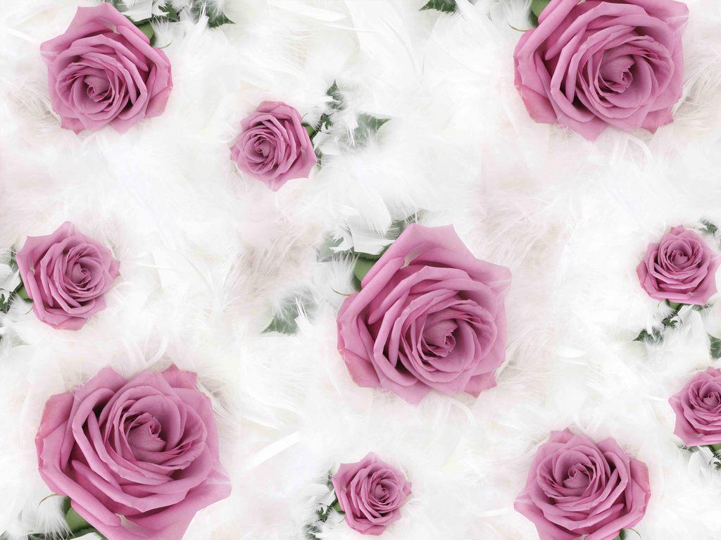 欧式唯美浪漫玫瑰花壁纸墙纸背景墙