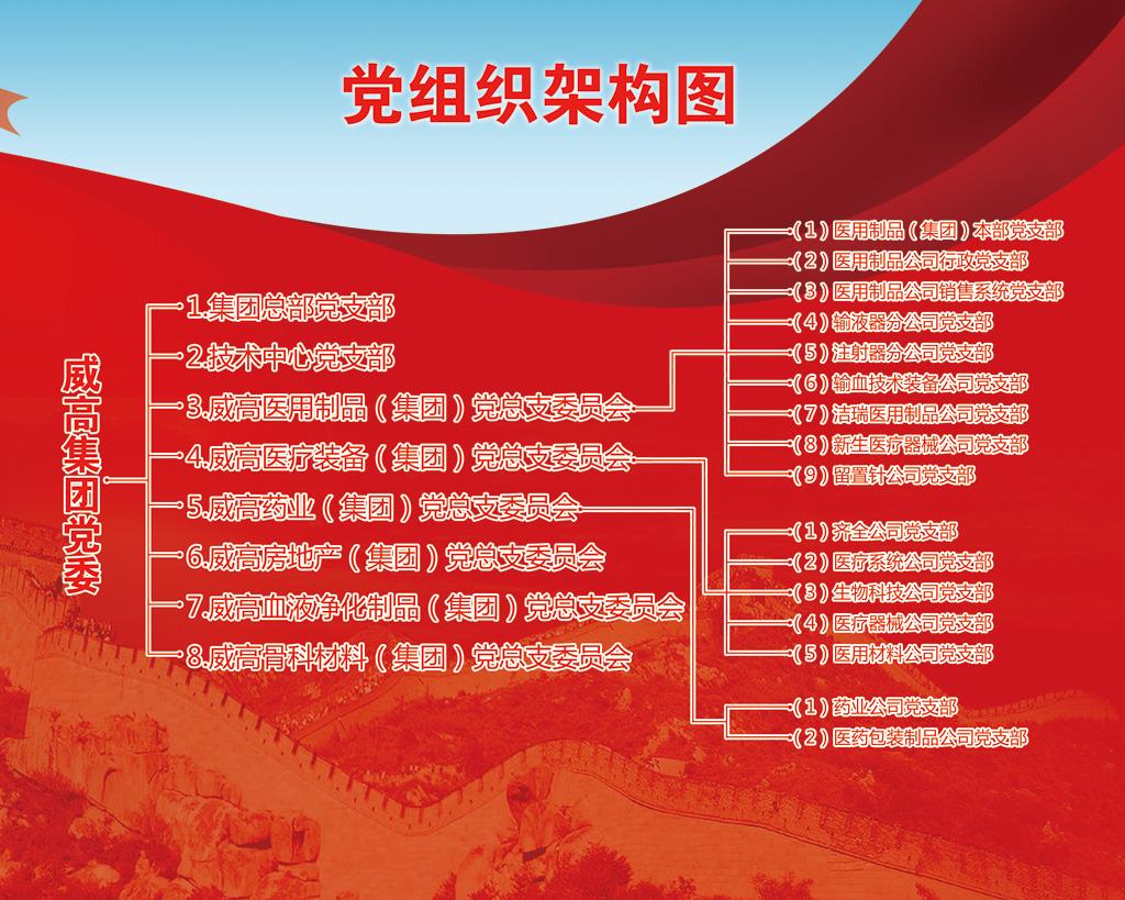党组织结构图模板下载