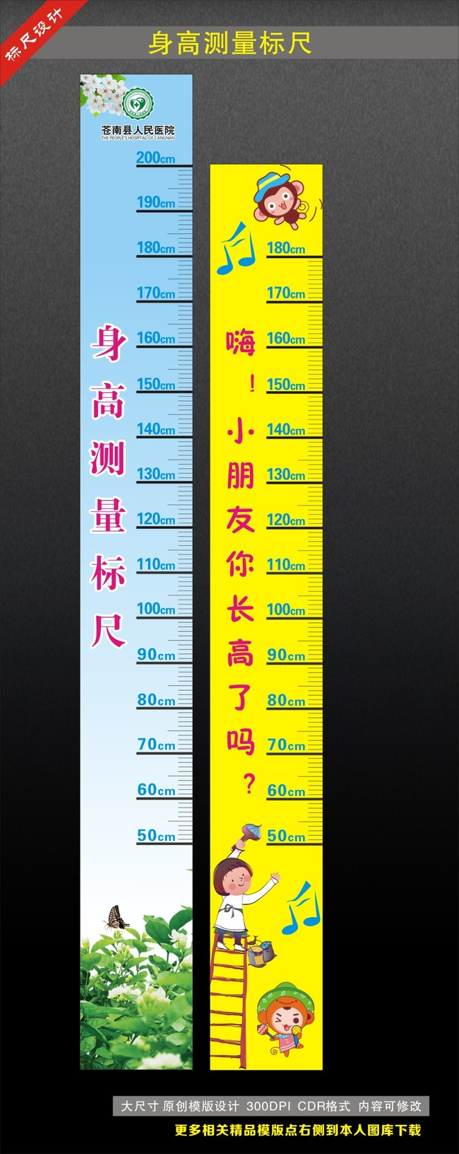 身高测量标尺