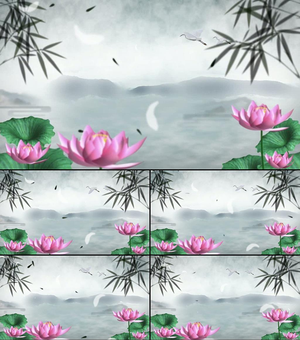 中国风荷花鱼led水墨动态视频素材
