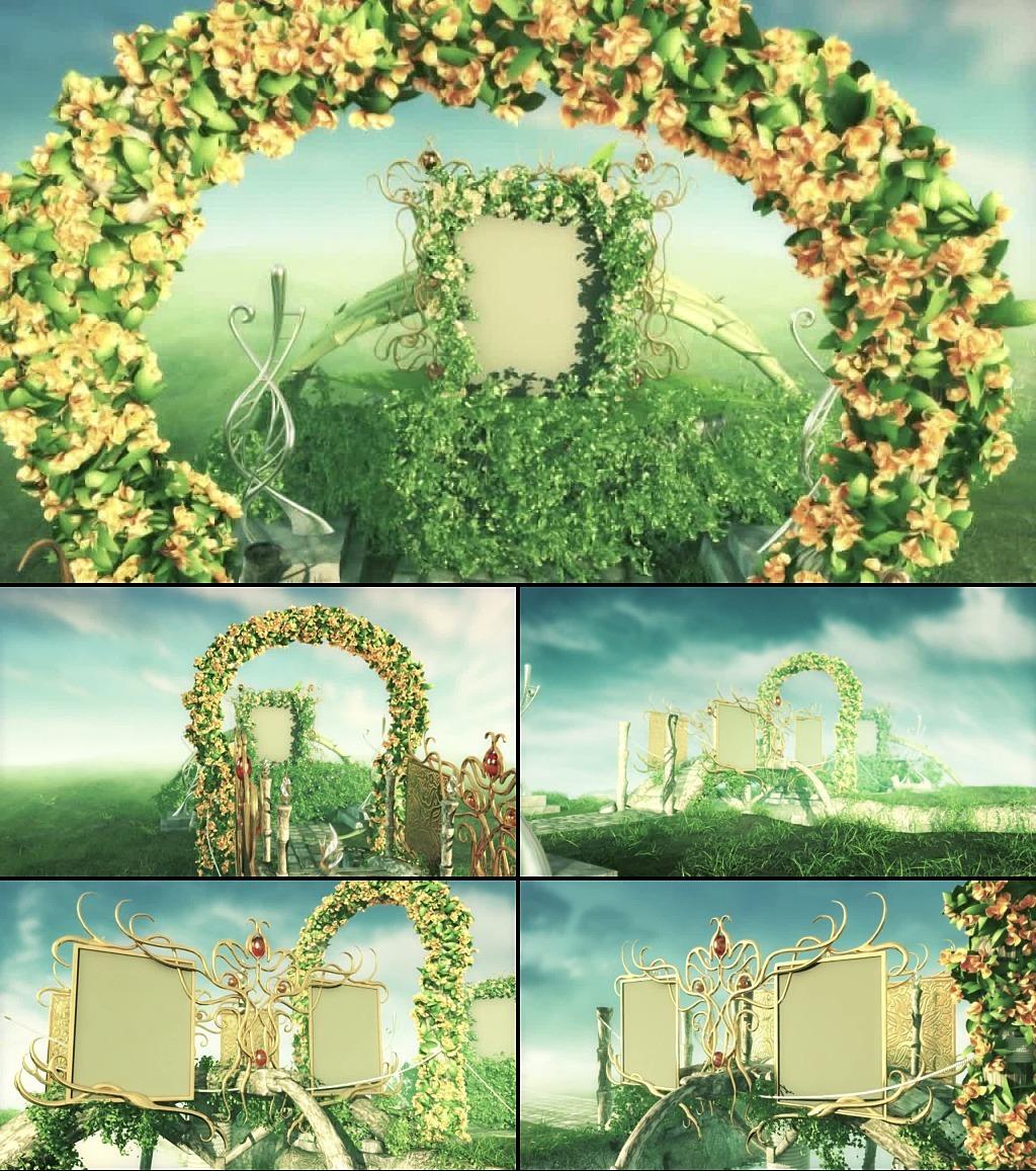 绿野仙踪唯美婚礼动态视频模板下载(图片编号:)