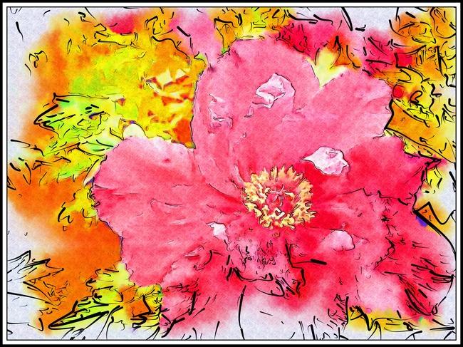 牡丹花水彩画