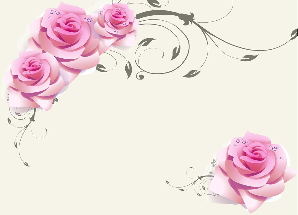 线条 花纹 花藤 唯美 花瓣