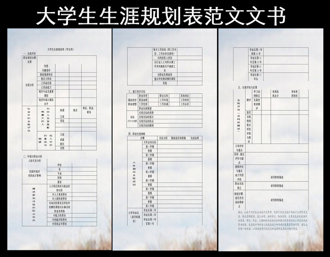大学生 职业规划模板 表格