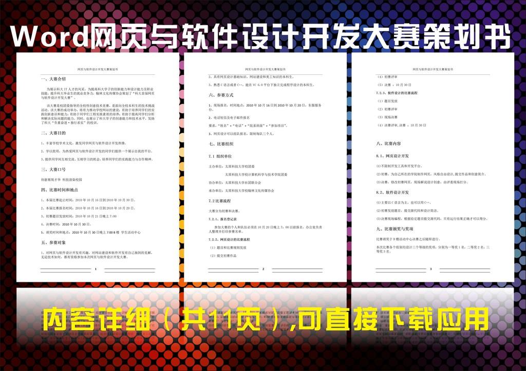 网页与软件设计开发大赛策划书模板下载(图片编号:)