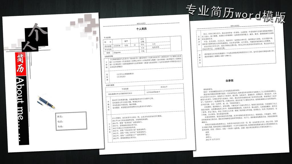 医药销售简历模板word下载