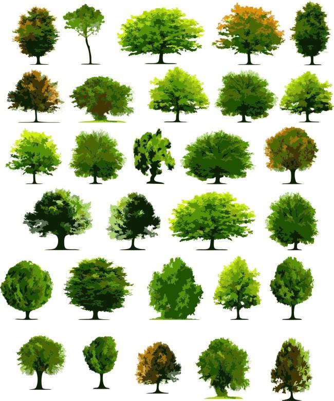 树木模板下载 树木图片下载