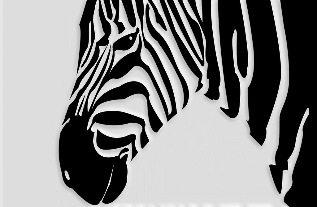 现代时尚简约黑白斑马