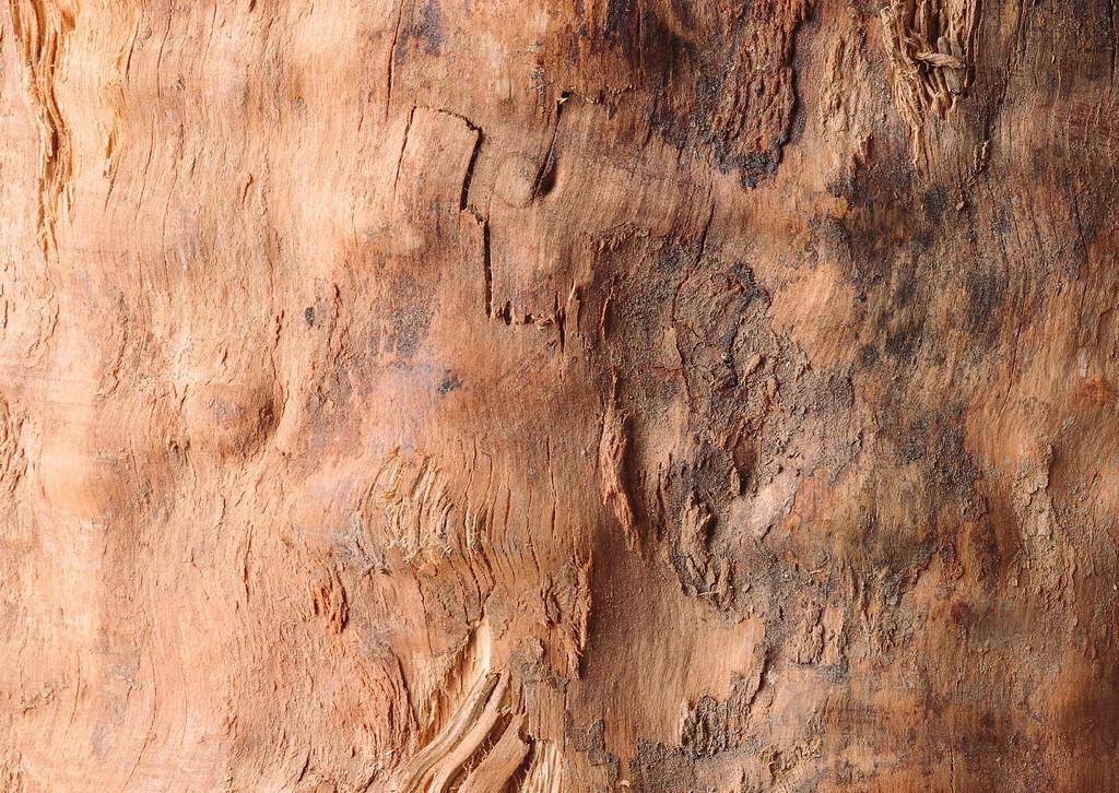 3d贴图 木材质 木材 地板