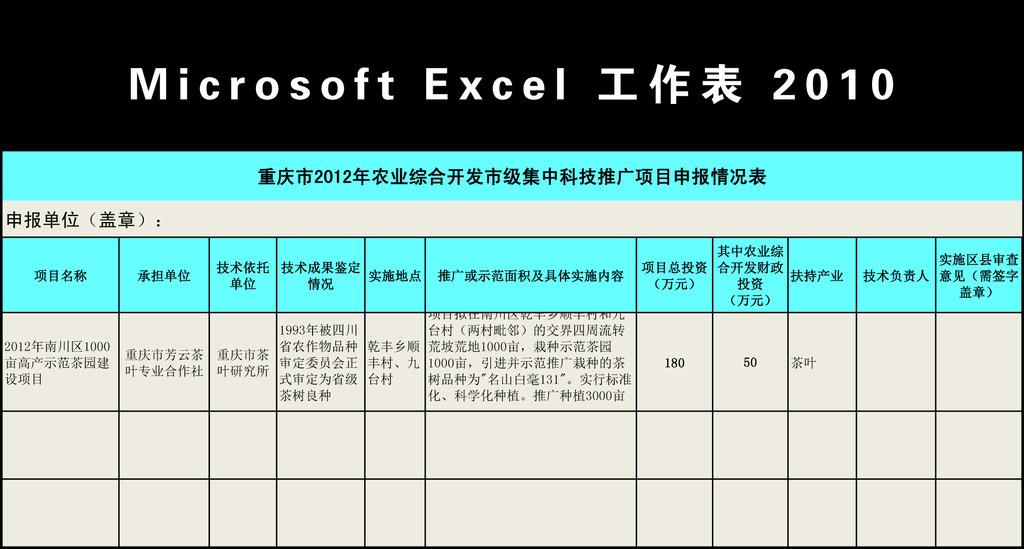 excel表格 excel模板 excel模版 财务报表 会计报表 企业申报表 项目