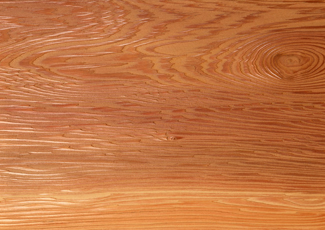 木材质 木质剖面