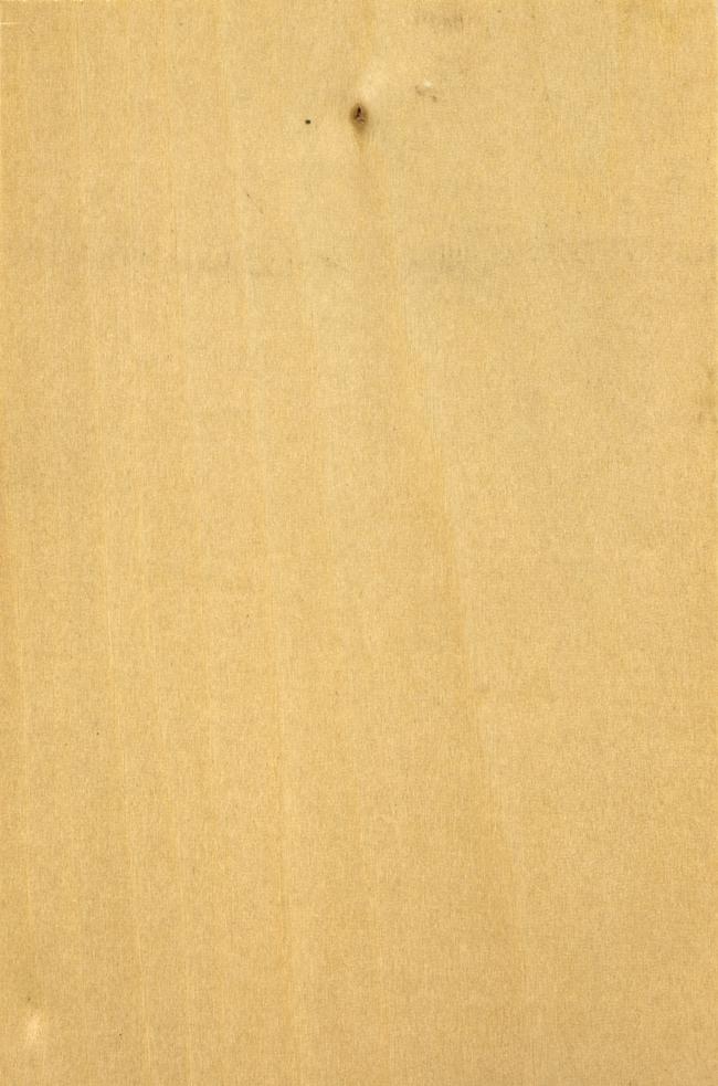 白色实木纹理贴图素材图片下载木纹材质木纹贴图木头