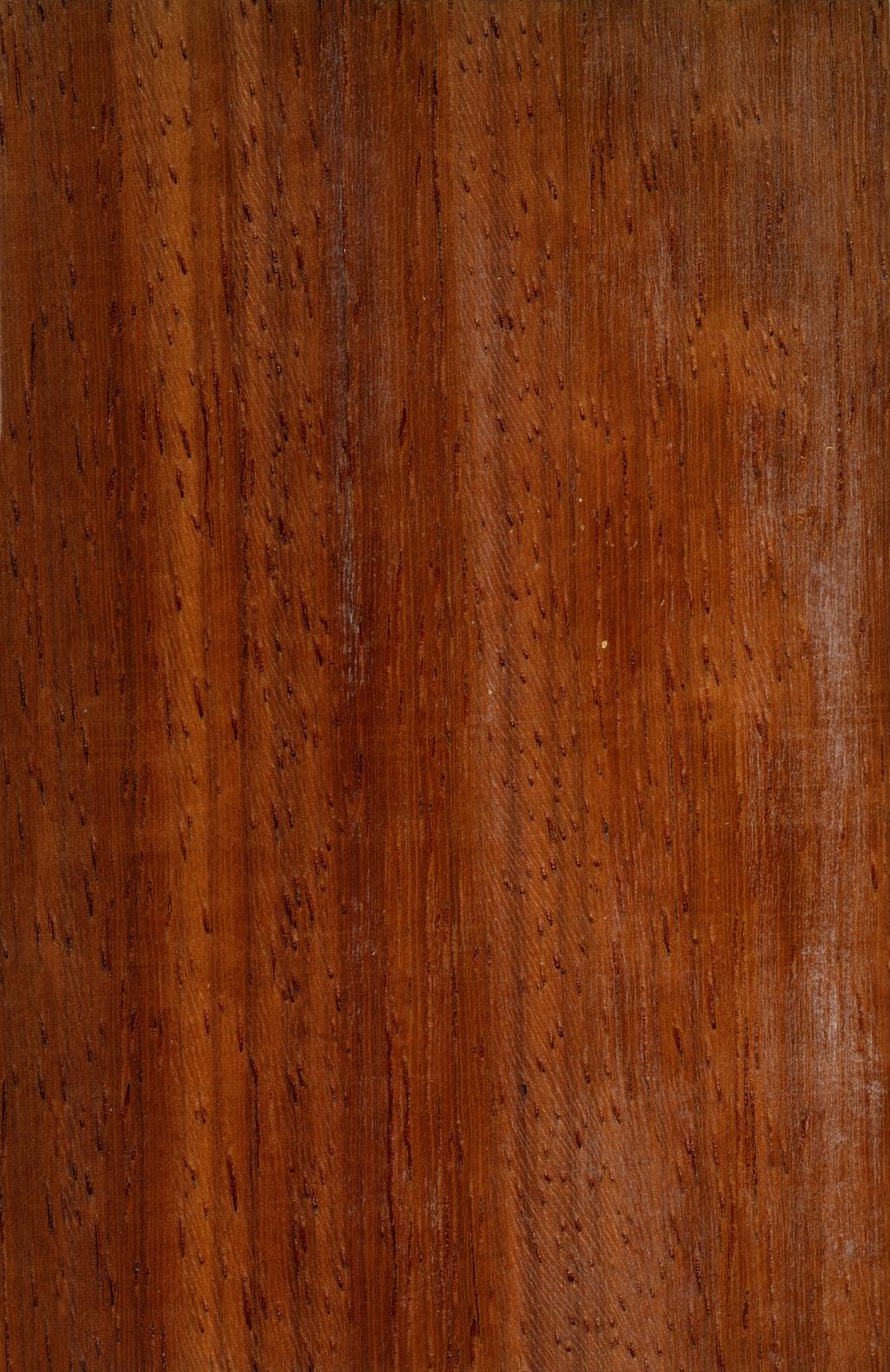 非洲实木实拍纹理素材