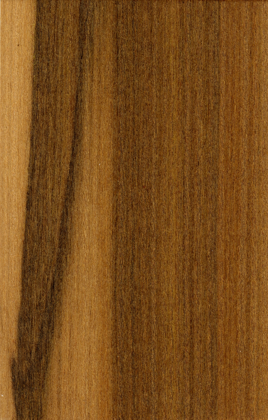 木纹材质纹理贴图高清实拍