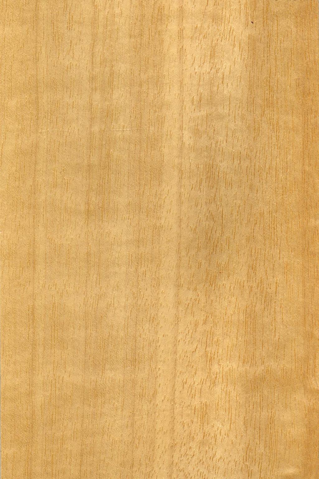 木纹贴图素材图片下载