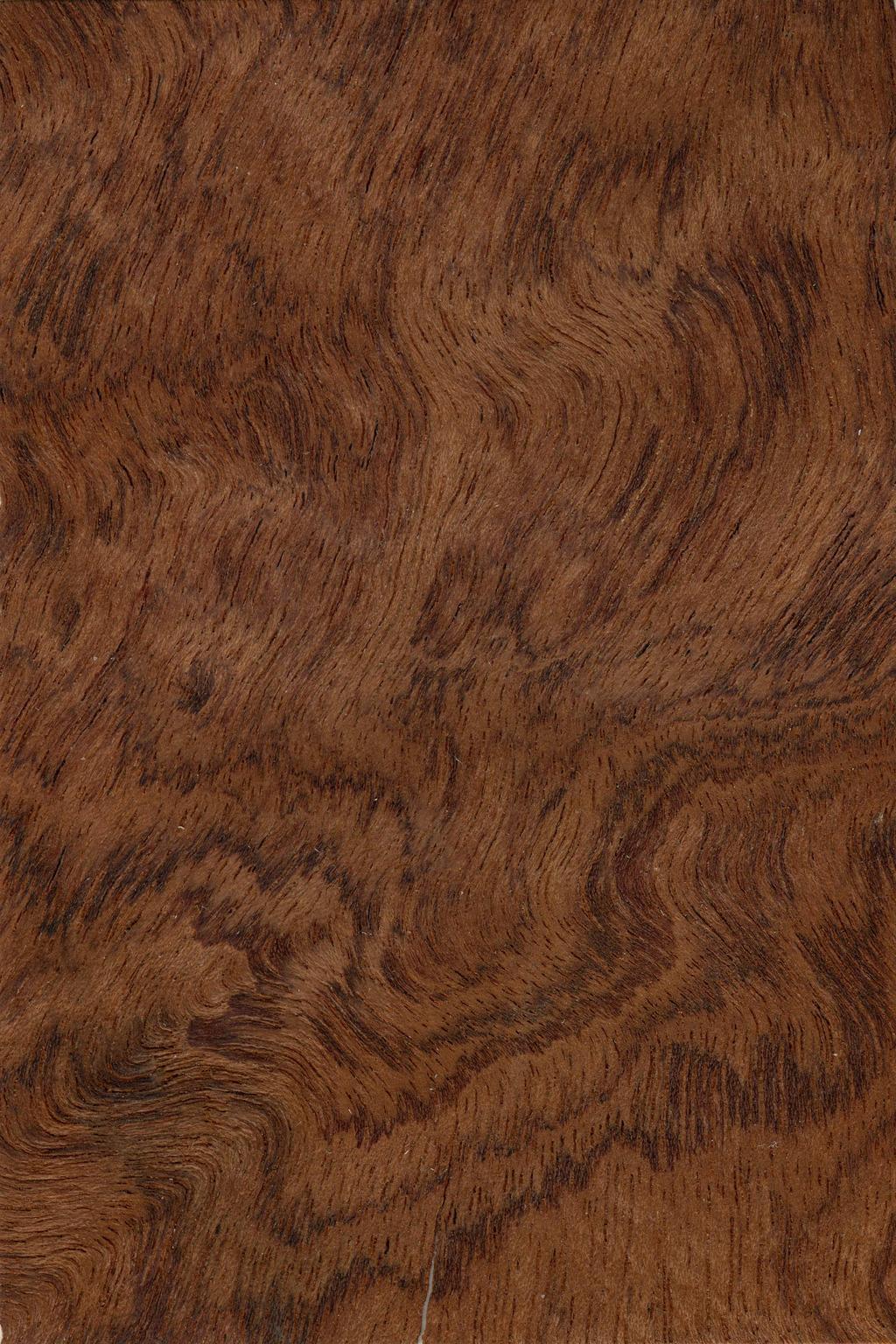 非洲红木木纹贴图素材