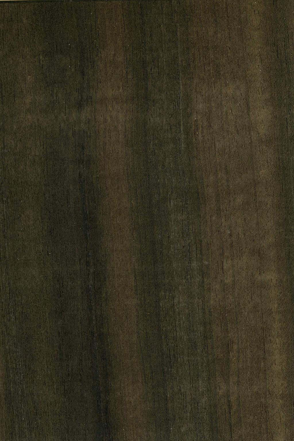 桉树木纹贴图素材图片下载 木纹高清图模板下载  木地板 3d贴图 木