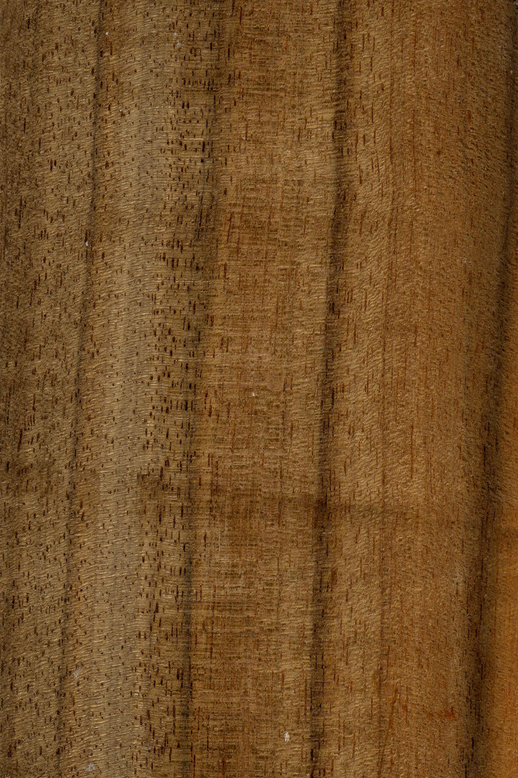 高档木材木纹贴图素材