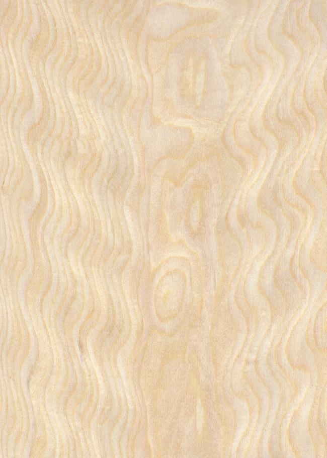 白枫排骨影木纹贴图