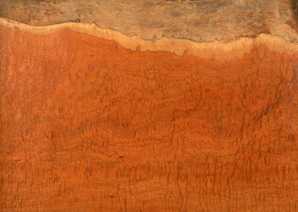 高清纹理木纹素材贴图下载实木纹理