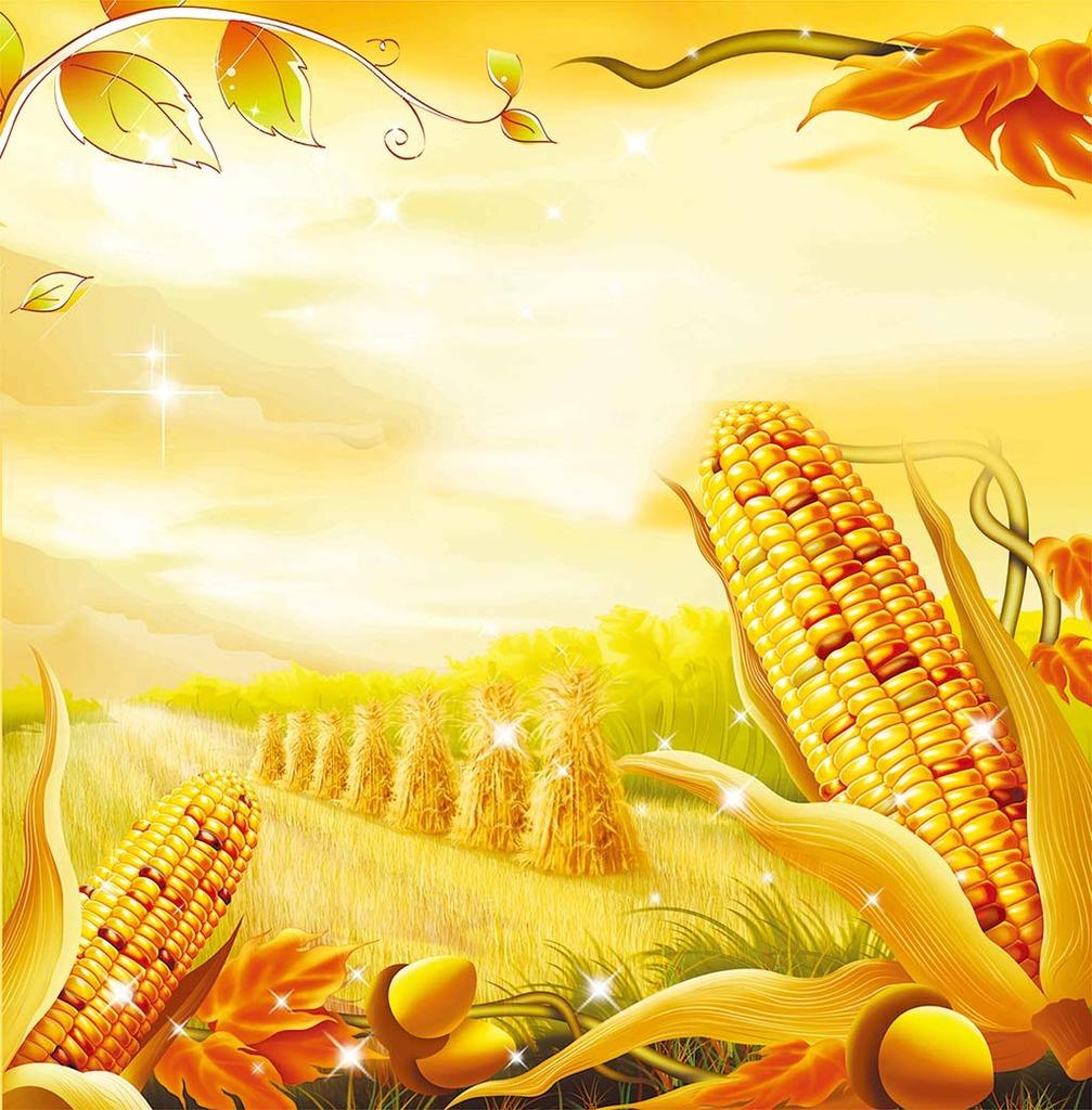 背景墙|装饰画 电视背景墙 手绘电视背景墙 > 高粱玉米美丽秋收稻草
