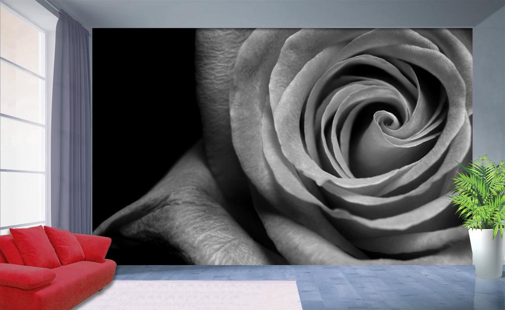 玫瑰花黑白画手绘展示