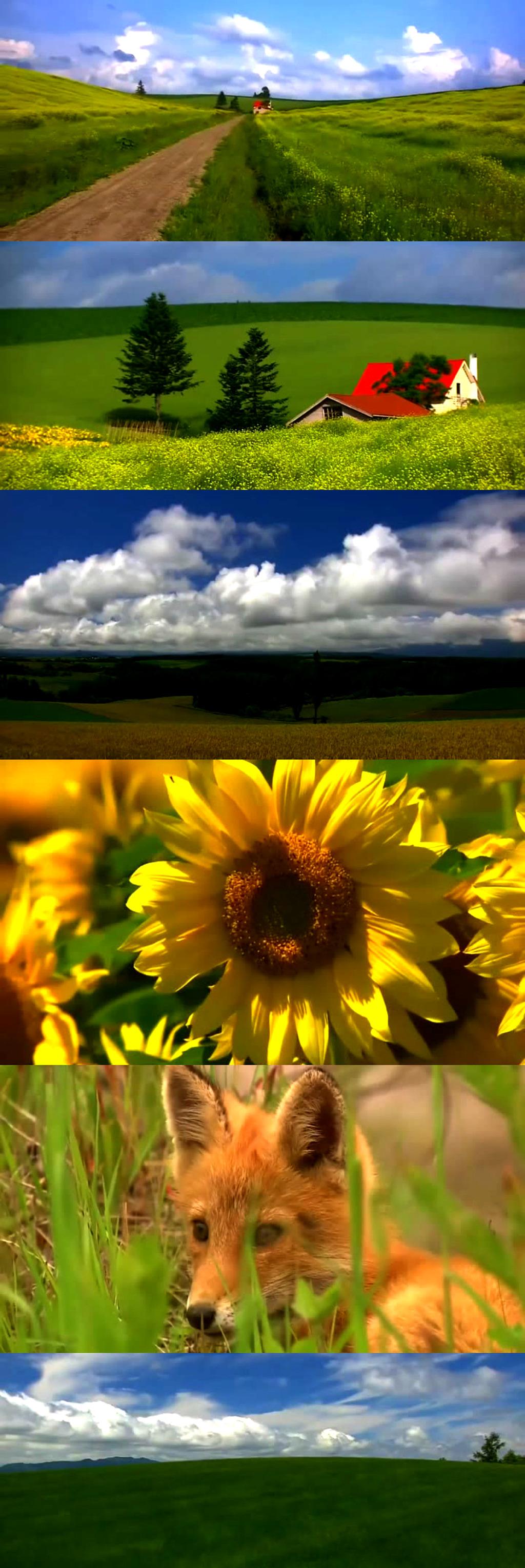 风景视频背景音乐