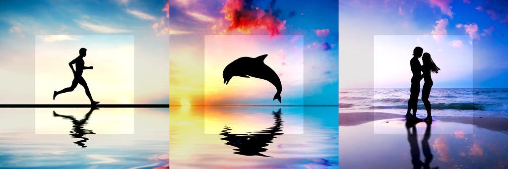 海豚恋人唯美图片