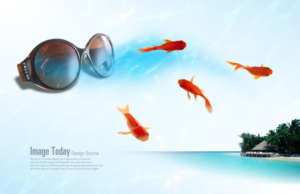 鱼产品设计手绘