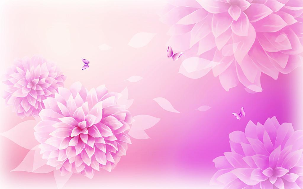 温暖的花图片唯美手绘