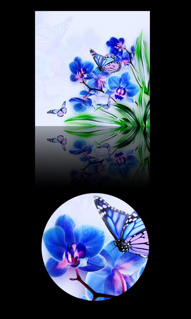 蝴蝶兰水粉装饰画