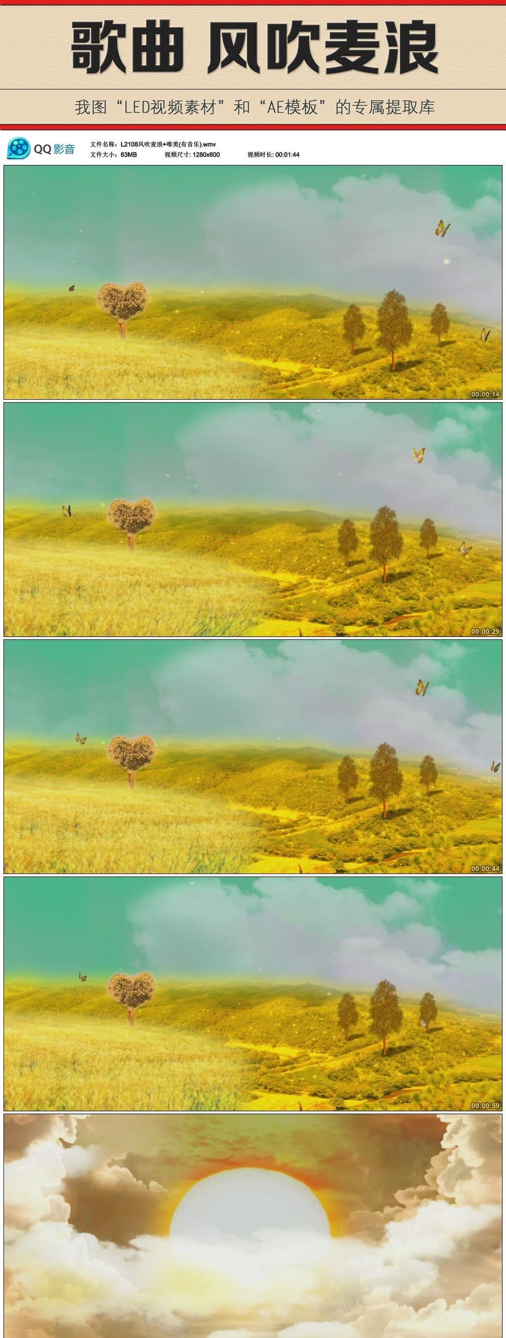 歌曲《风吹麦浪》led视频