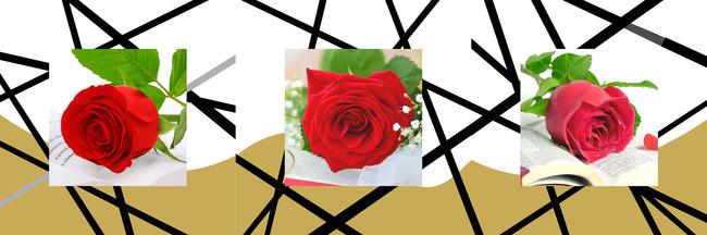 【jpg】玫瑰花立体层次装饰画
