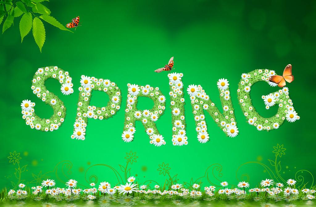 春天的时间合唱谱