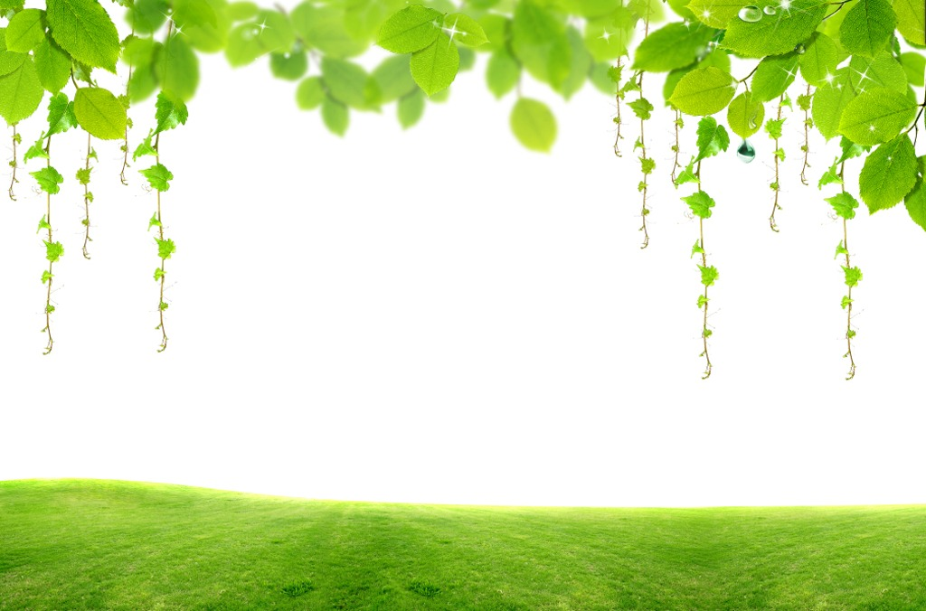 现代简约绿树护眼时尚壁画电视背景墙高清图片下载()