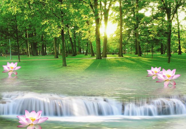 3d自然山水风景画荷花背景墙