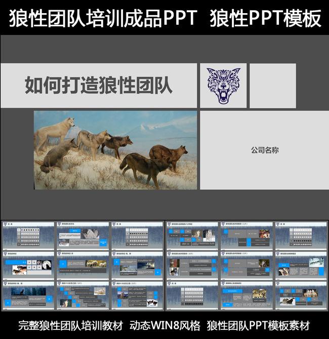 完整企业文化狼性团队培训ppt模板模板下载(图片编号