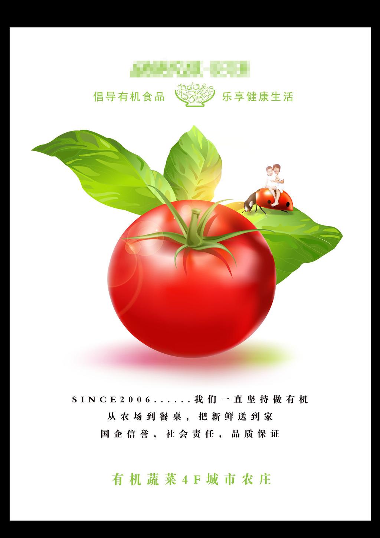 有機食品 蔬菜海報
