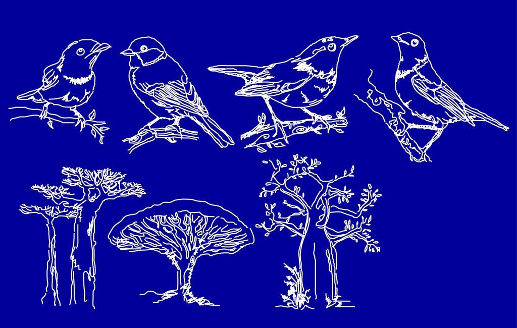 平面设计 其他 插画|元素|卡通 > 福利回馈低价销售矢量鸟木线描  下