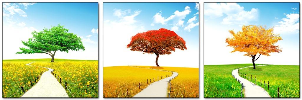 秋天风景树无框画