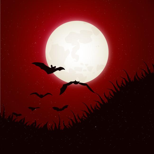 月夜蝙蝠背景模板下载 月夜蝙蝠背景图片下载 月夜蝙蝠背景 月亮 星星
