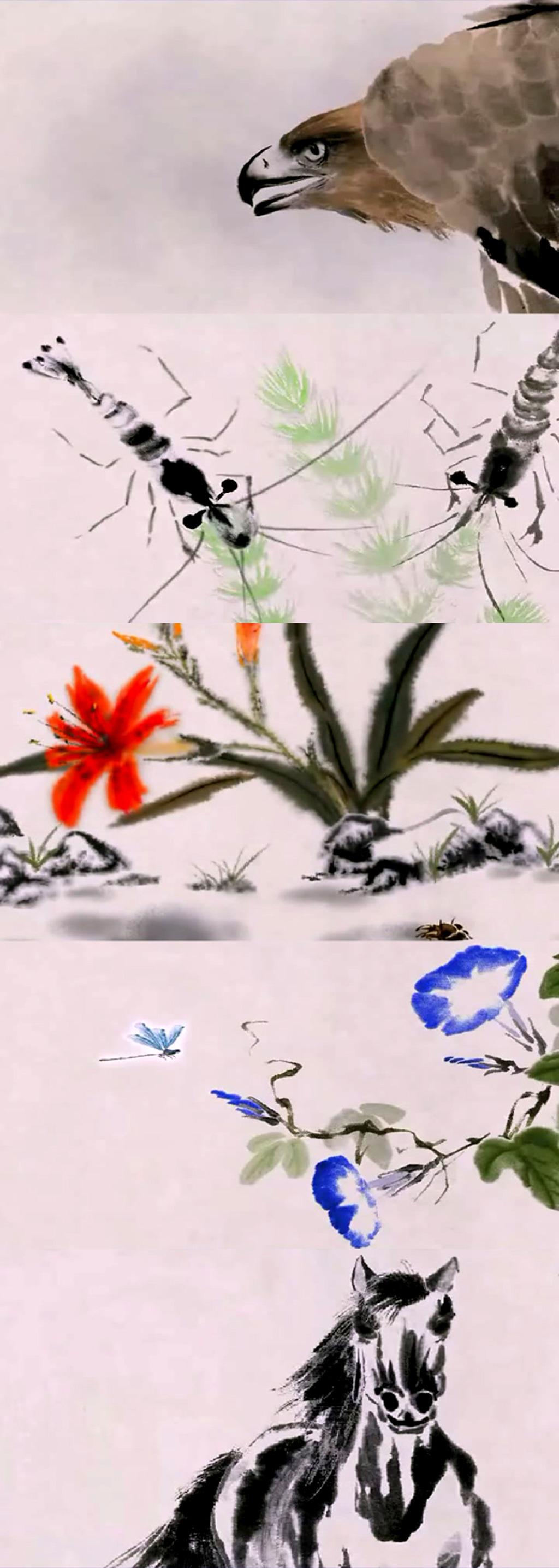 水墨视频水墨动画水墨国画国画水墨素材 水墨动物国画 水粉画 蜻蜓